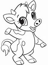 Cow Baby Coloring Pages Printable Animals Categories Version sketch template