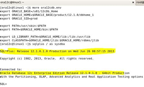 Oracle Datbase 12c Installation On Linux 64-bit