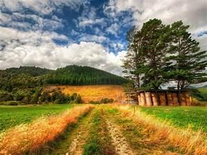 Download, Wallpaper, New, Zealand, Scenery, Wallpapers13, Com