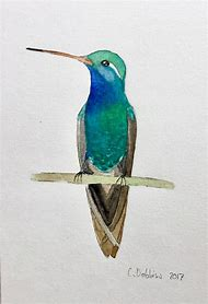 Watercolor Hummingbird Wall Art