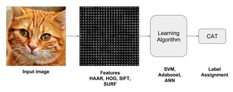 image recognition  object detection part  learn opencv