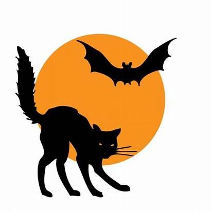 Halloween Bat Clipart Cat Fledermaus Clip Moon