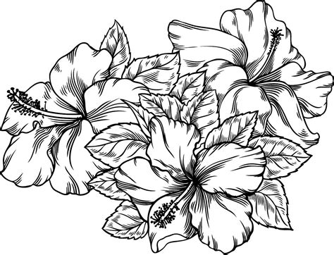 Azuzena Flower Template by Azucena Flower Coloring Pages Sketch Coloring Page