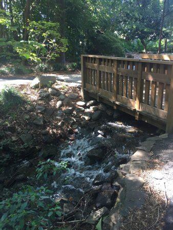 hatcher garden woodland preserve spartanburg sc top