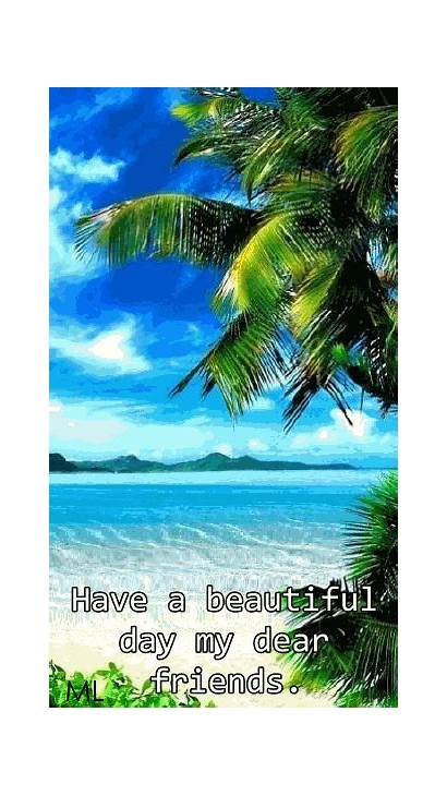 Wallpapers Tropical Summer Animated Mobile Beach Iphone