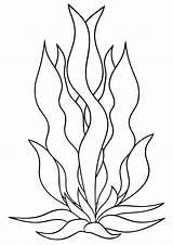 Seaweed Coloring sketch template