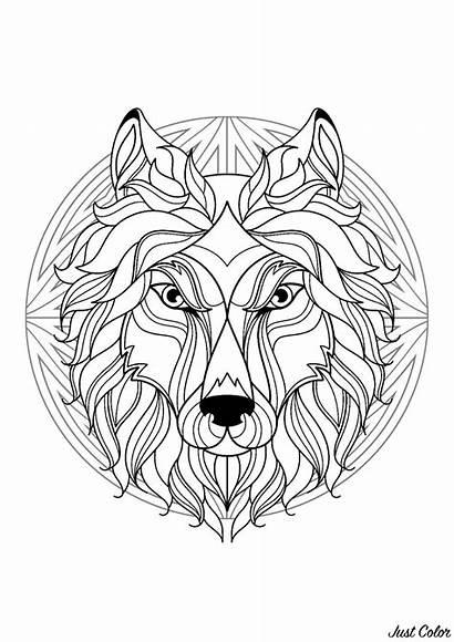 Wolf Mandala Head Coloring Patterns Simple Mandalas