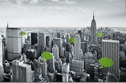 Building Leed Buildings Sustainability Countries Rated Survey