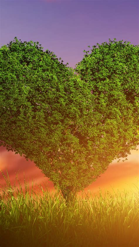 stock images love image heart tree  stock images