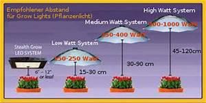 Indoor Grow Anleitung : pflanzen abstand cheap bentigt je nach dem wuchs der sorten einen von cm x cm bis cm x cm with ~ Eleganceandgraceweddings.com Haus und Dekorationen