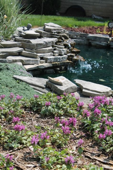 garden pond design 67 cool backyard pond design ideas digsdigs