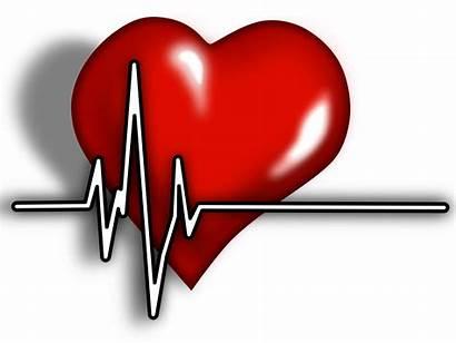 Clipart Heart Health Medical Hearts Ecg Ve