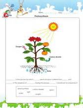 Photosynthesis Diagram Worksheet Answers Photosynthesis For Worksheets Pichaglobal