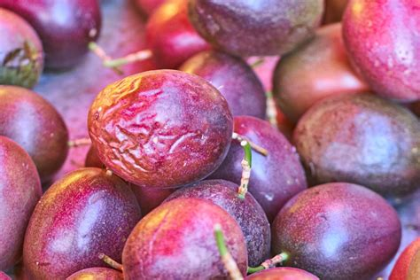 passion fruit puree recipe