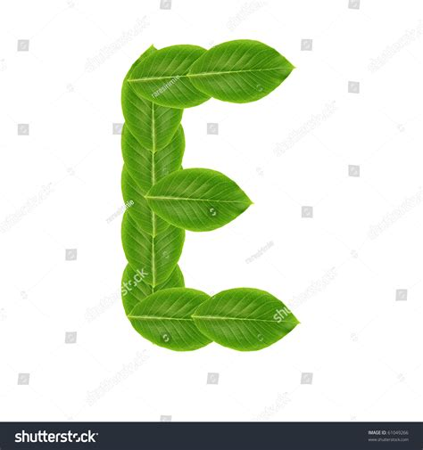 ls made from leaves letter e made from leaves stock photo 61049266 shutterstock