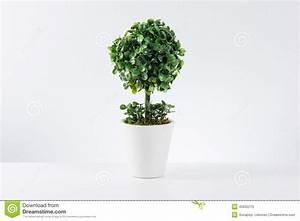 Baum Im Topf : kleiner baum im wei en topf stockfoto bild von frech verbogen 45932210 ~ A.2002-acura-tl-radio.info Haus und Dekorationen