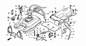 Wiring Diagram For Honda Trx400fw A