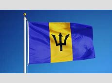 Barbados Flag Waving Stock Footage Video 2849431