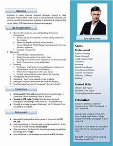 Free resume formats sample resume format resume for Free resume review