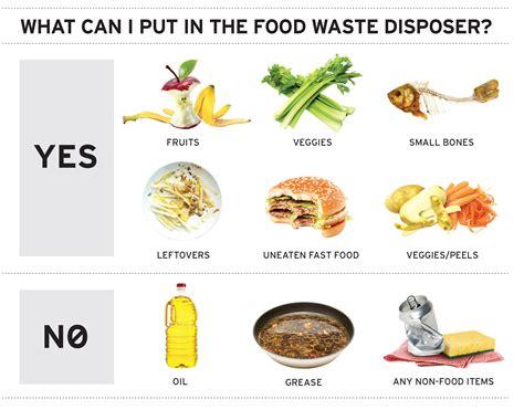 garbage disposal what not to put in a garbage disposal insinkerator