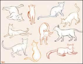 cat sketch cat sketches by inonibird on deviantart