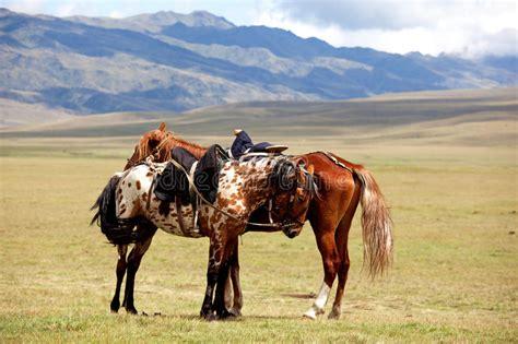 nomadic horsemen riding sunset horses two