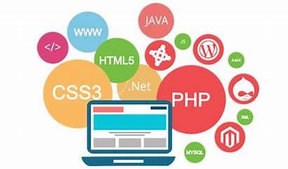 Website Dynamic Designing Web Delhi Required Admin