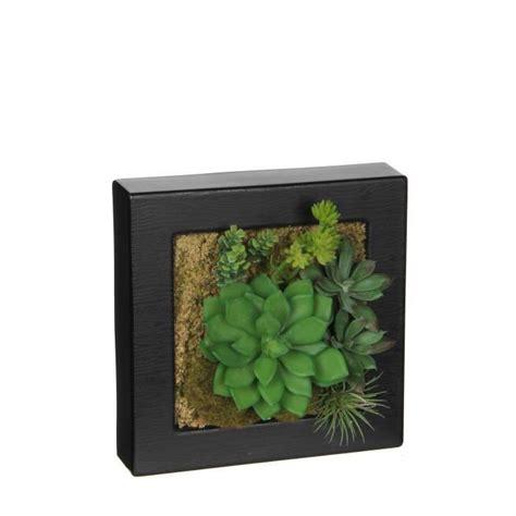 cadre vegetal achat vente cadre vegetal pas cher cdiscount