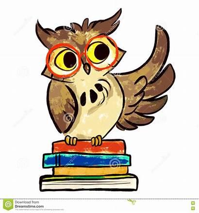 Uil Boeken Leren Owl Books Learning Gufo