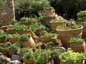 Herbes Aromatiques En Pot : cr er un jardin d 39 herbes aromatiques mode d 39 emploi ~ Premium-room.com Idées de Décoration
