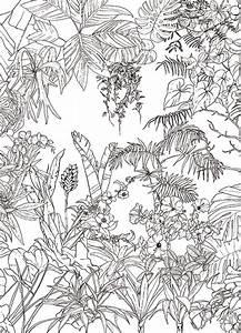 Papier Peint Jungle Noir Et Blanc D Co Kaki Et Gris Un Esprit