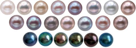 pearl colors choosing the pearl your guide to an