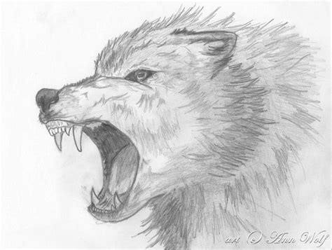 images  wolfs  pinterest wolves wolf