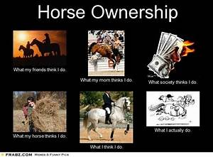 Repin if you ag... Horse Owning Quotes