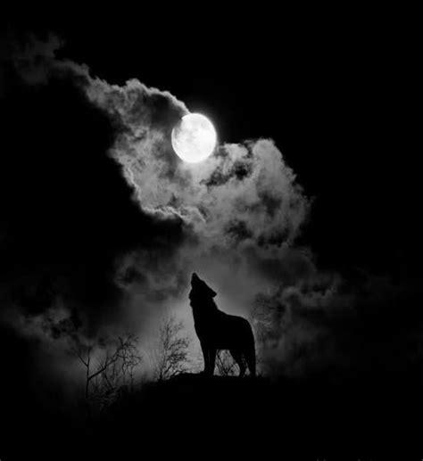 howl   moon good night moon pinterest