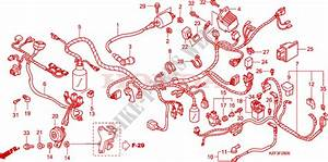 Wire Harness For Honda Innova 125 2010   Honda Motorcycles  U0026 Atvs Genuine Spare Parts Catalog