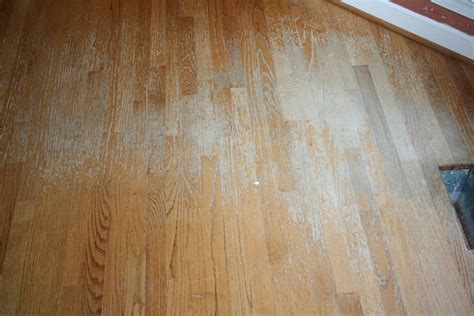 Buff and Coat Your Wood Floors   Denver Shower Doors