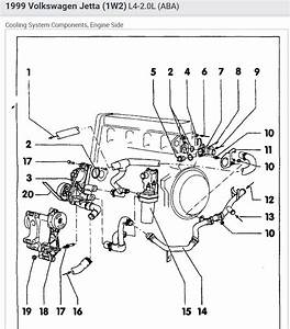 2001 Vw Jetta Radiator Hose Diagram Wiring Diagram