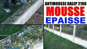 Sika Stop Mousse Pro : anti mousse toiture pro mur terrasse test sur cl ture ~ Dailycaller-alerts.com Idées de Décoration