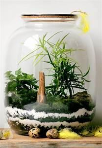 Bonsai Im Glas : las w s oiku good inside ~ Eleganceandgraceweddings.com Haus und Dekorationen