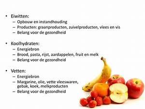Calorieën Verbruik meter reviews Ervaringen Forum