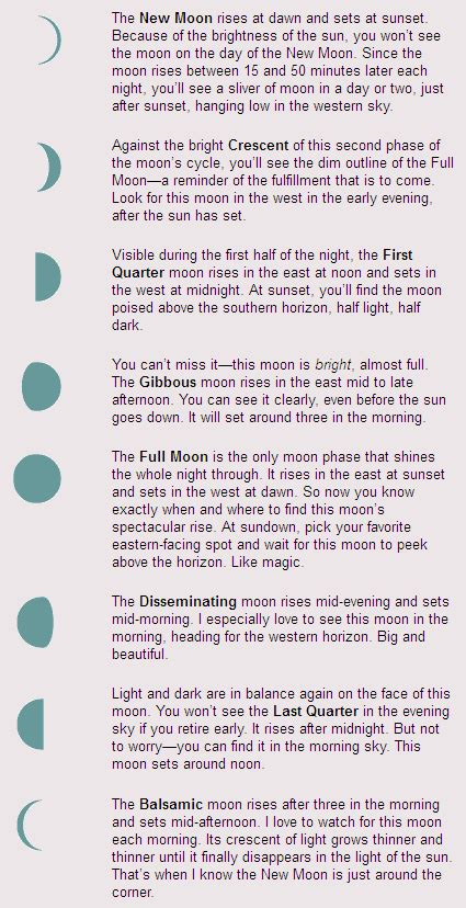 quick guide  moon phases mooncircles