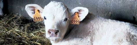 chambre d agriculture de la vend馥 identification des animaux ipg agriculture pays de la loire
