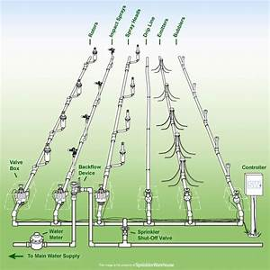 Anatomy Of A Sprinkler System