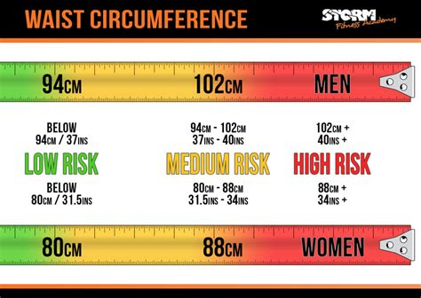 health check waist circumference storm fitness academy