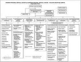 Regional Medical Center Organizational Chart