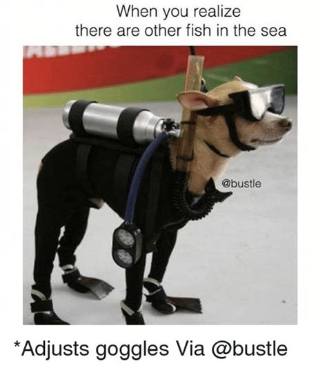 Fish In The Sea Meme - when you realize there are other fish in the sea adjusts goggles via meme on sizzle
