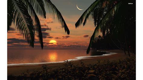 miami sunset wallpaper gallery