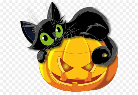 black cat halloween kitten clip art large transparent