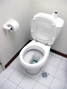 Toilette Abfluss Reinigen : het toilet goed en milieuvriendelijk schoonmaken ~ Sanjose-hotels-ca.com Haus und Dekorationen
